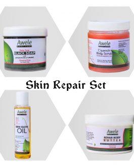 Skin Repair Set